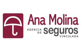 Ana Molina Seguros